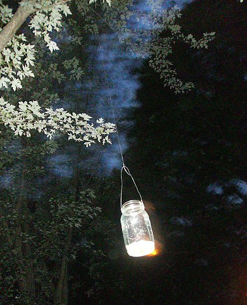 Jar + tree + sky
