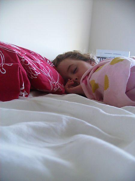 Mimo - sleeping