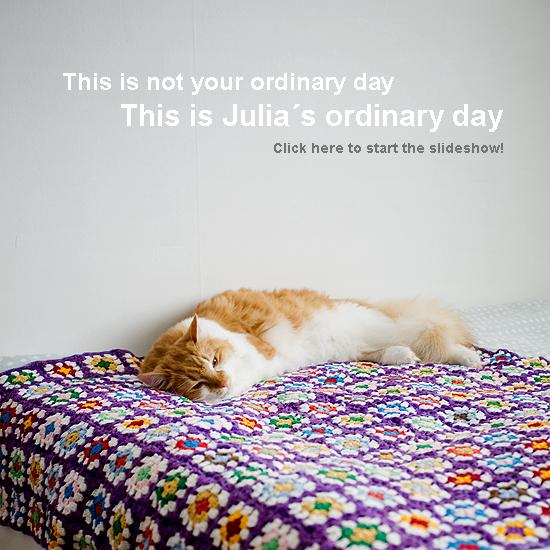 Julias ordinary day 1