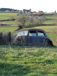 Marion - countryside - car