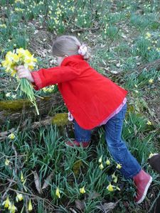 Marion - daughter - picking flowers