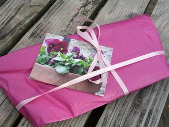 Pretty_wrapping_nice_parcel_2nd_par